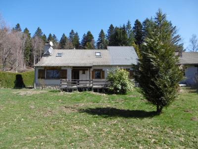 Maison conviviale sur un terrain arboré de 1200m²