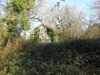 Beau terrain valloné de 11.149 m² avec petite grange à resta