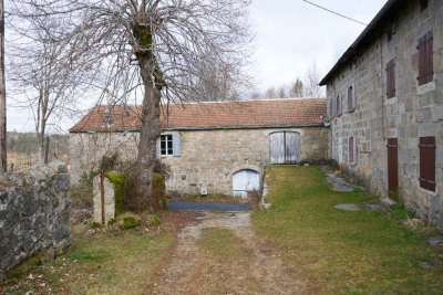 Farm 10 rooms