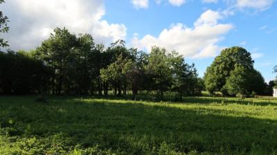 Terrain 1200 m²