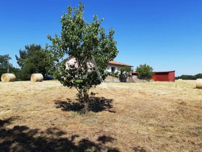 Maison Plain pied sur Parcelle de 3 794m² - St Lys