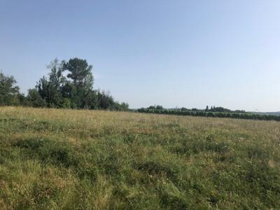 Terrain plat Aignan 5000 m²
