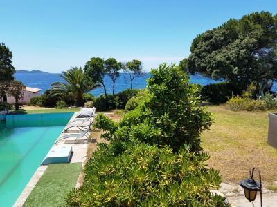 Bungalow 3 pièces pieds dans l'eau, piscine à Pietrosella