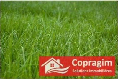 Terrain agricole § grange