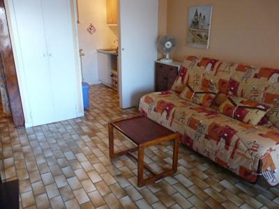 Appartement Le Grau Du Roi 1 pièce(s) 23 m2