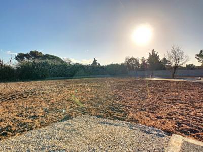 Lot 6 terrain a bâtir carpentras - 626 m²