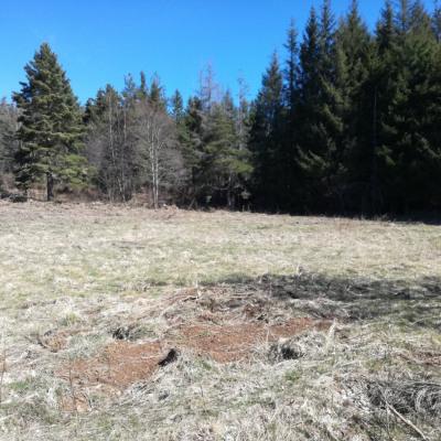 Terrain plat 6100 m² constructible + 6300 de bois secteur B