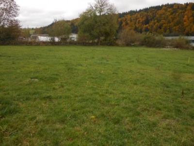 Deux terrains sur la commune de st pierre eynac viabilisés