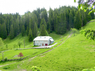 Très belle ancienne ferme de 6 hectares sans voisinage et access