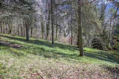 Terrain Sallanches 1100 m2