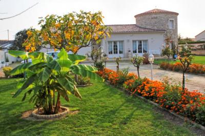Maison Saint Palais Sur Mer 7 pièce (s) 187 m²
