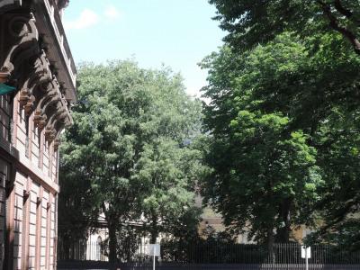 Toulouse Jardin Royal