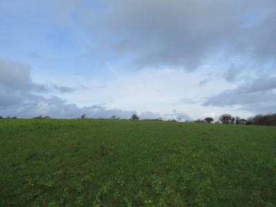 Peumerit - terrain agricole