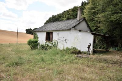 Maison Montoire Sur Le Loir 1 pièce(s) 36 m2