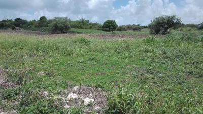 Saint FRANÇOIS à vendre très beau terrain plat 1000m²