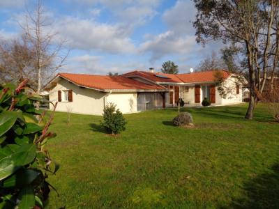 Villa mézos 2009