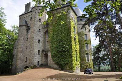 A vendre - château - loire - noiretable - 1120 m² - 22 chambres