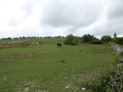 Vente terrain Buhy