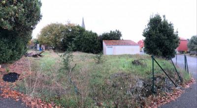 Terrain à Bâtir- La Limouziniére