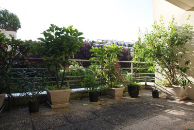 Terrasse ensoleillée sur jardin