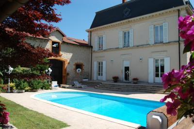 North Lyon, 19th century property, 700 m2 living space, Rece