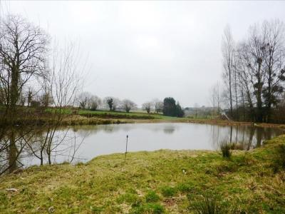 Terrain avec étang