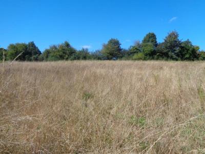 Vente terrain Thury Harcourt