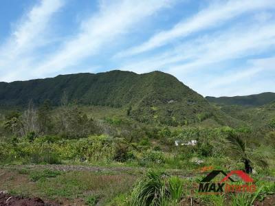 Terrain la plaine des palmistes - 3800 m²