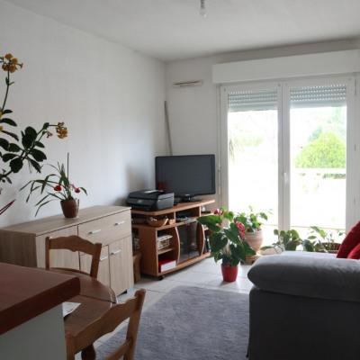 Appartement - 2 pièce (s) - 32 m²