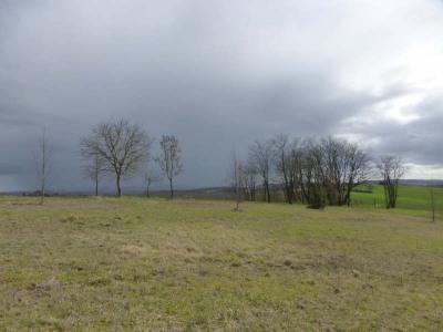 Stukken grond  Monsegur