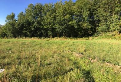 Terrain a bâtir landerneau - 564 m²