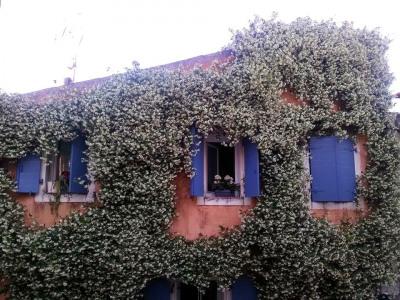 Maison de ville Cogolin 3 pièce (s) 95 m²