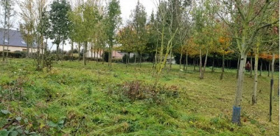 Parcelle de terrain située proche d'Aumale