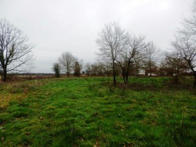Terrain Aire Sur L Adour 3554 m²