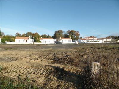 Terrain constructible bois de cene - 501 m²