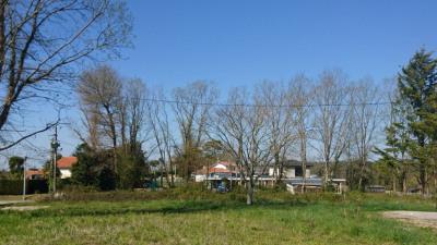 Terrain à bâtir Saint Lon Les Mines 1273 M²