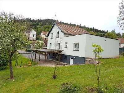 Maison st die - 7 pièce (s) - 160 m²