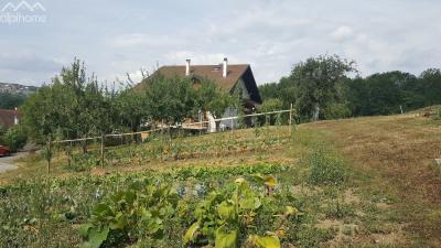 Type 4 dans maison avec jardin 740 m² / garage / cave
