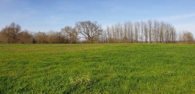 Terrain proche Pontonx Sur L Adour 1864 m²