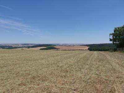 5 Terrains à bâtir, 2 minutes du centre de Pont sur Yonne