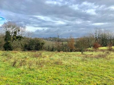 Terrain Montfort En Chalosse 1000 m²