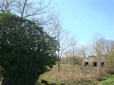 Vente maison / villa Sion les Mines (44590)
