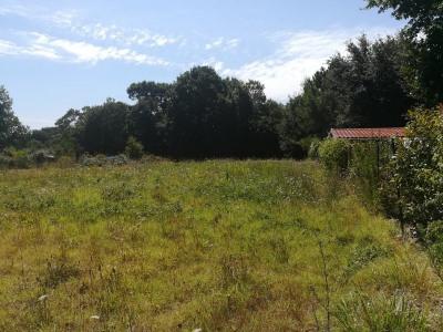 Saint augustin - terrain a bâtir de 1022 m² en parti boisé