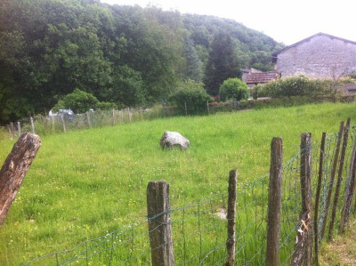 Vente terrain Cornod (39240)