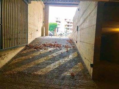 Toulouse Busca Pont des Demoiselles - parking sous