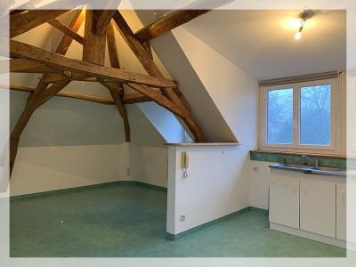 Appartement Oree D Anjou 2 pièce (s) 30 m²