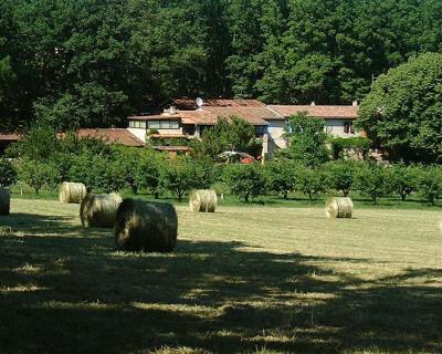 Propriété de 8 hectares