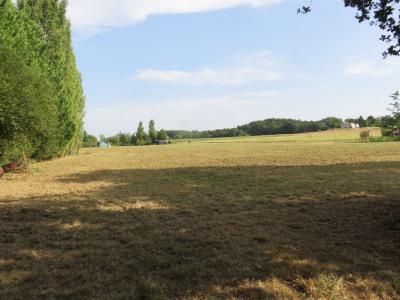 Terrain 1 hectare
