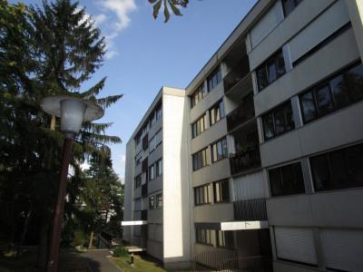 Appartement Le Pecq 4 pièce (s)