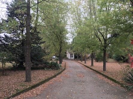 Vente maison / villa Andrezieux-boutheon 450000€ - Photo 3